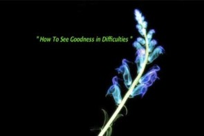 Radhanath Swami On How to See Goodness in Difficulties